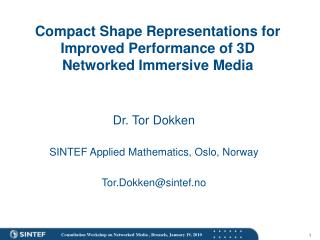 Compact Shape Representations for Improved Performance of 3D Networked Immersive Media
