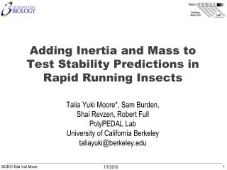 Adding Inertia and Mass to Test Stability Predictions in Rapid Running Insects