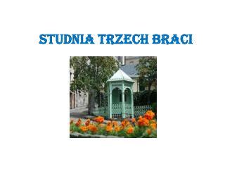 STUDNIA TRZECH BRACI