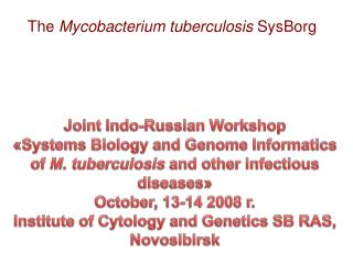 The  Mycobacterium tuberculosis  SysBorg