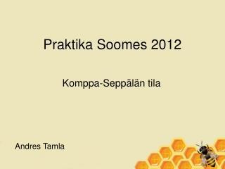 Praktika Soomes 2012