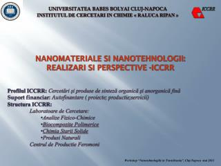NANOMATERIALE SI NANOTEHNOLOGII:  Realizari si perspective -ICCRR