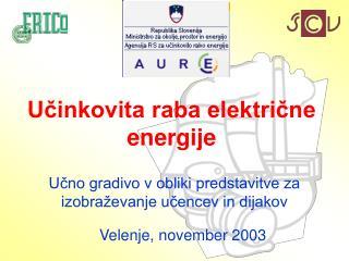 Učinkovita raba električne energije
