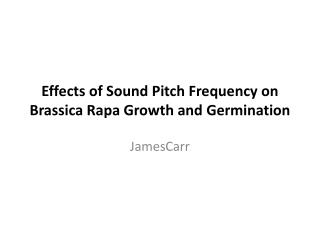 Effects of Sound Pitch Frequency on Brassica Rapa Growth and Germination