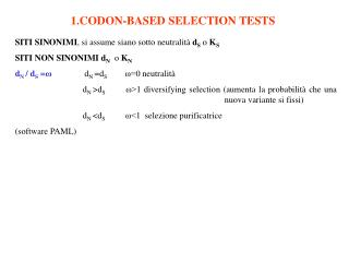 1.CODON-BASED SELECTION TESTS