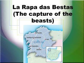 La Rapa das Bestas (The capture of the beasts)