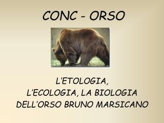 CONC - ORSO