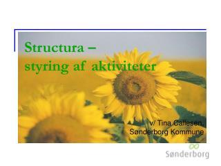 Structura –  styring af aktiviteter