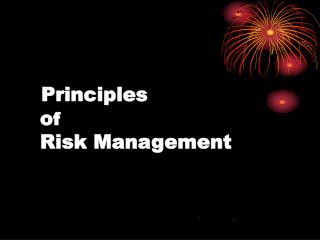 Principles    of    Risk Management