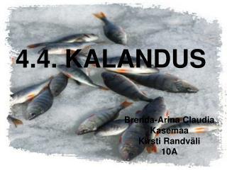 4.4. KALANDUS