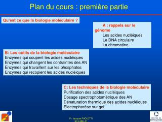 A : rappels sur le génome Les acides nucléiques Le DNA circulaire La chromatine