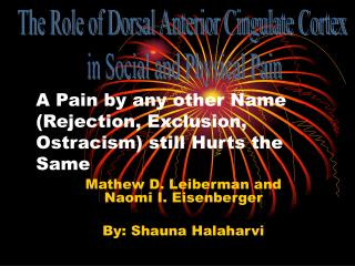 A Pain by any other Name (Rejection, Exclusion, Ostracism) still Hurts the Same