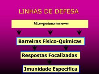 LINHAS DE DEFESA