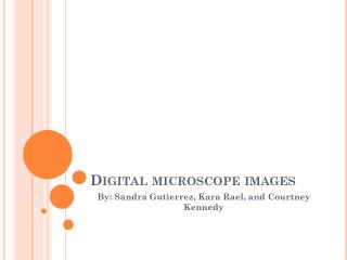 Digital microscope images