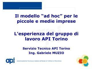 """Il modello """"ad hoc"""" per le piccole e medie imprese L'esperienza del gruppo di lavoro API Torino"""