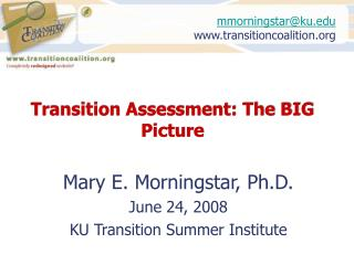 Transition Assessment: The BIG Picture