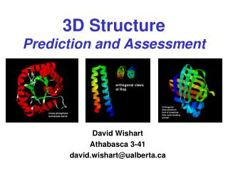 3D Structure Prediction and Assessment