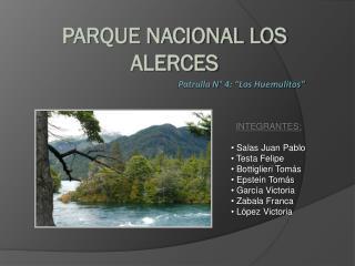 """Patrulla N° 4: """"Los Huemulitos"""""""