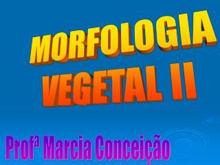 MORFOLOGIA VEGETAL II