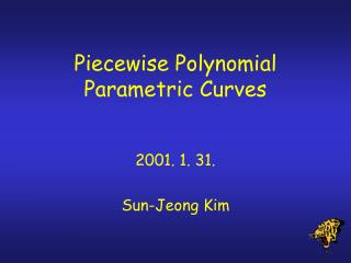 Piecewise Polynomial Parametric Curves