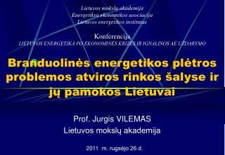 Branduolin ės energetikos plėtros problemos atviros rinkos šalyse ir  jų pamokos Lietuvai