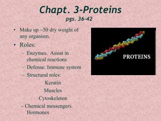 Chapt. 3-Proteins pgs. 36-42