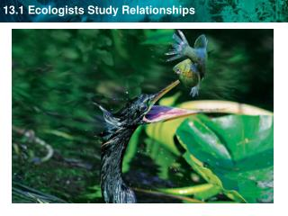 Ecology - study of the interactions between living things and their surroundings.