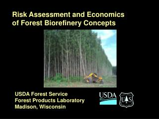 Risk Assessment and Economics of Forest Biorefinery Concepts
