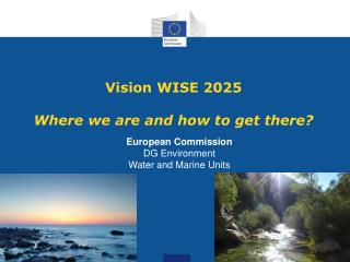 Vision WISE 2025 Where we are and how to get there?
