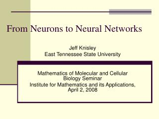 From Neurons to Neural Networks