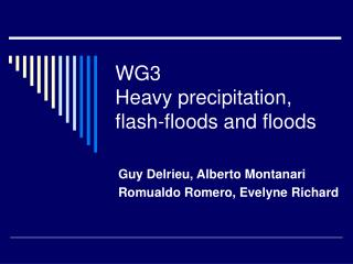 WG3 Heavy precipitation, flash-floods and floods