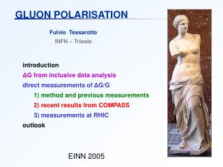 GLUON POLARISATION