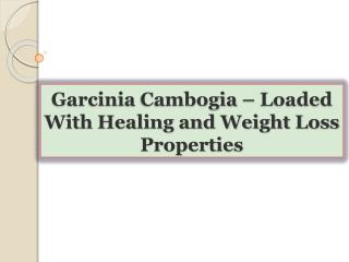 Garcinia Cambogia – Loaded With Healing and Weight Loss Prop