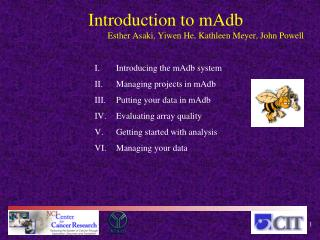 Introducing the  mAdb  system Managing projects in  mAdb Putting your data in  mAdb