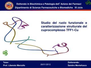 Studio del ruolo funzionale e caratterizzazione strutturale del cuprocomplesso TFF1-Cu