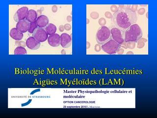 Biologie Moléculaire des Leucémies Aigües Myéloïdes (LAM)