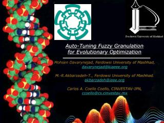Auto-Tuning Fuzzy Granulation  for Evolutionary Optimization