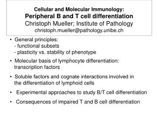 Cellular and Molecular Immunology: Peripheral B and T cell differentiation