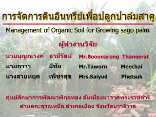 Management of Organic Soil for Growing sago palm