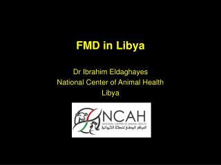 FMD in Libya
