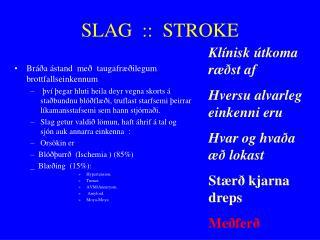 SLAG  ::   STROKE