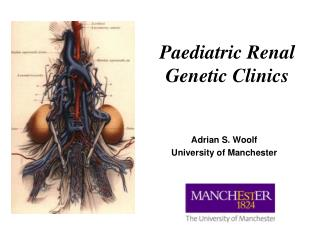 Paediatric Renal Genetic Clinics