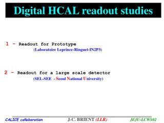 Digital HCAL readout studies
