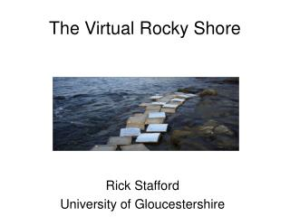 The Virtual Rocky Shore