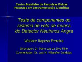 Centro Brasileiro de Pesquisas Físicas Mestrado em Instrumentação Científica