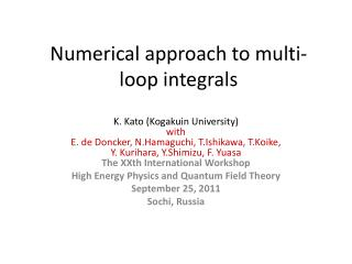 Numerical approach to multi-loop integrals