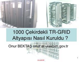 1000  Çekirdekli TR-GRID Altyapısı Nasıl Kuruldu ?