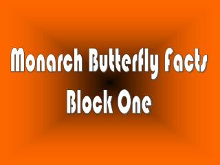 Monarch Butterfly Facts Block One