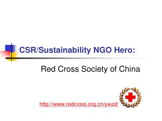 CSR/Sustainability NGO Hero: