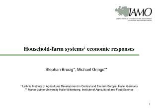 Household-farm systems' economic responses